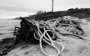 NEW BEACH CLEAN INITIATIVE