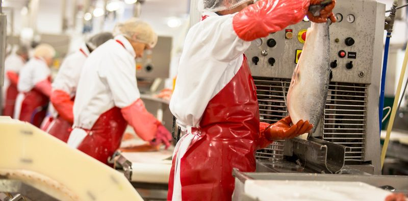 UK SEAFOOD SECTOR GEARS UP FOR SEAFOOD WEEK