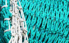 EU fleet shows economic benefits of sustainable fishing