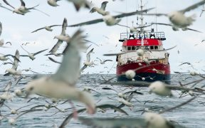 Canadian Fishermen to see Benefits of Exocet