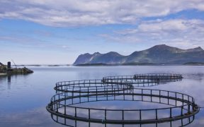AQUACULTURE RESEARCH AND INNOVATION