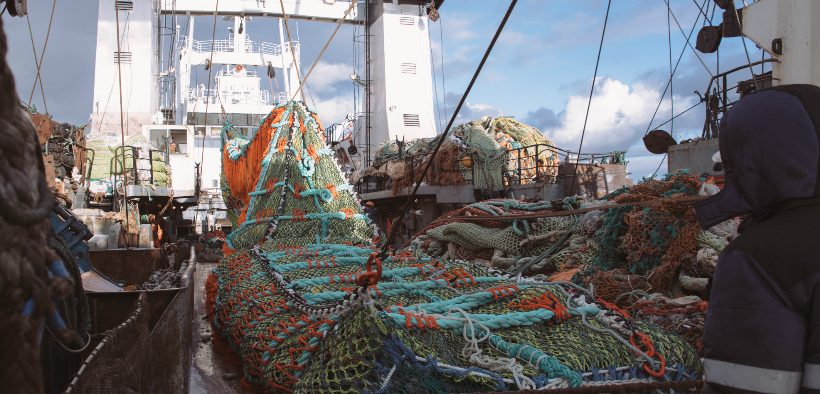 NEW CCO FOR RUSSIAN FISHERY COMPANY
