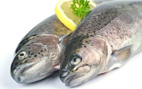 SEAFOOD COMPANIES ASSESSED