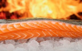 Edinburgh Salmon Company to Close