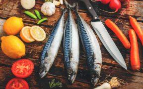 Irish mackerel quota agreement brings stability
