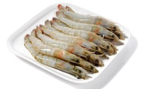BIOMAR TO BUILD NEW LINE FOR EXTRUDED SHRIMP FEED