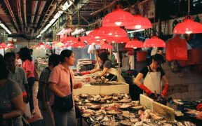 HONG KONG SUSTAINABLE SEAFOOD COALITION LAUNCHES
