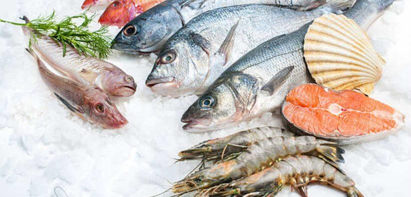 NORWEGIAN SEAFOOD EXPORTS UP