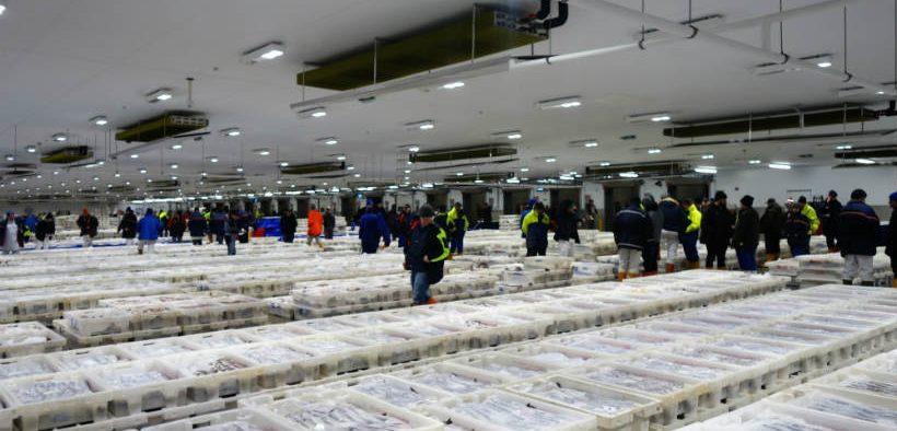 Fisheries Brexit Concerns