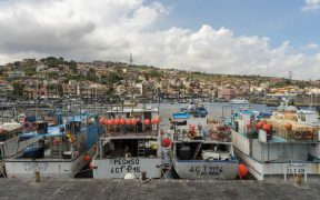 Oceana Accuses Italian Fishing Industry