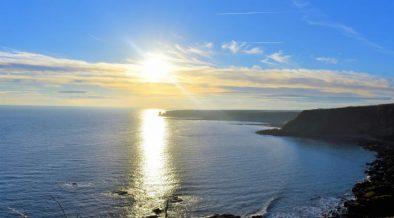 OCEAN DISCLOSURE PROJECT EXPANDS FORMAT