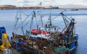 POLITICIANS TO RECOGNISE IMPORTANCE OF FISHING