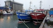 SEAFISH CALLS FOR RESHAPE OF RESPONSIBLE FISHING PORTS SCHEME