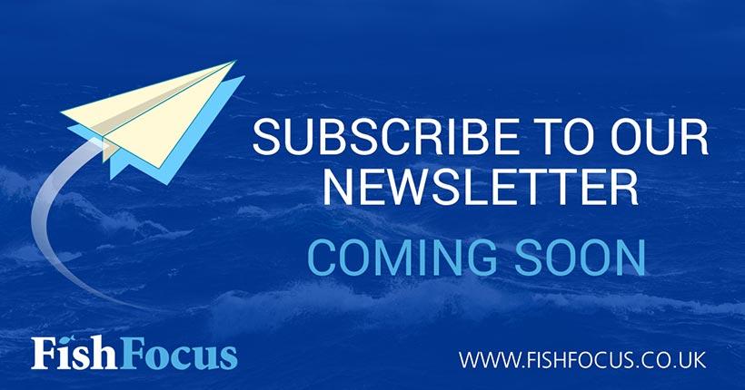 Fish Focus Newsletter