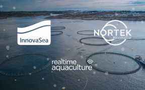 INNOVASEA COMPLETES PURCHASE OF NORTEK AKVAKULTUR