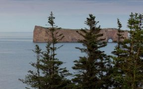 NEW MARINE PROTECTED AREA AT GASPÉ PENINSULA
