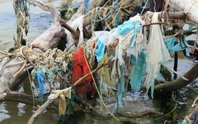 PROGRESS BEING MADE ON GHOST FISHING