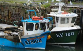 BUSINESS AS USUAL FOR UK FISHING FLEET