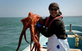 REVITALISATION OF JAPANESE OCTOPUS FISHERY