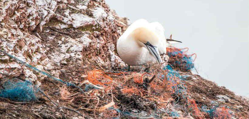 SCHEME TO MINIMISE FISHING GEAR PLASTIC POLLUTION