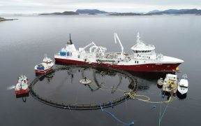 ATLANTIS SUBSEA FARMING