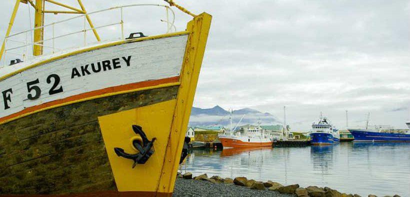 ICELANDIC CATCH VALUES RISE