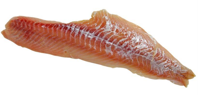gapp-and-true-north-seafood