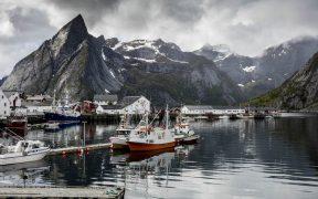 norwegian-frozen-cod-export-rises