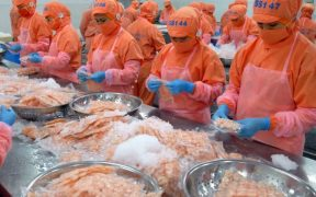 Vietnamese shrimp capitalise on Canada