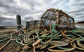 IRISH BID TO BOOST SEAFOOD EXPORTS