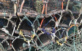 INSHORE FISHERIES CONFERENCE BURSARIES