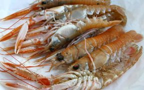 SEAFOOD EXPORTS TO CHINA