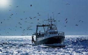 UK FISHING STATISTICS