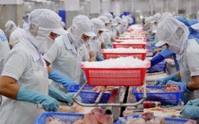 Vietnamese exports