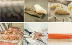 NORWEGIAN SEAFOOD EXPORTS EXCEED