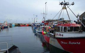 EC FISH QUOTA TALKS