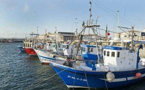 SPANISH FISHING FEDERATION