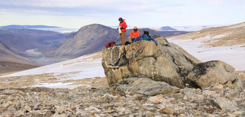 A NEW NETWORK FOR ARCTIC