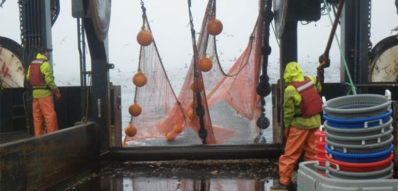 Local management best for minimising trawl impact