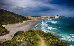 Public feedback sought on NZ marine protection