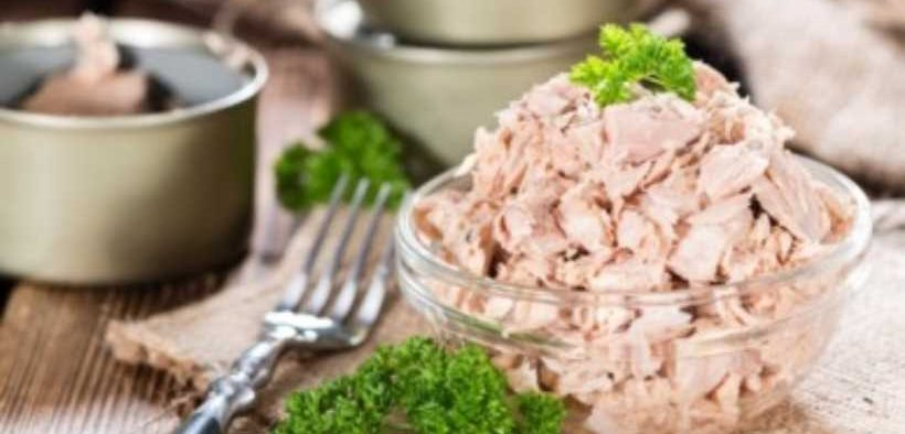 VIETNAM CANNED TUNA EXPORTS