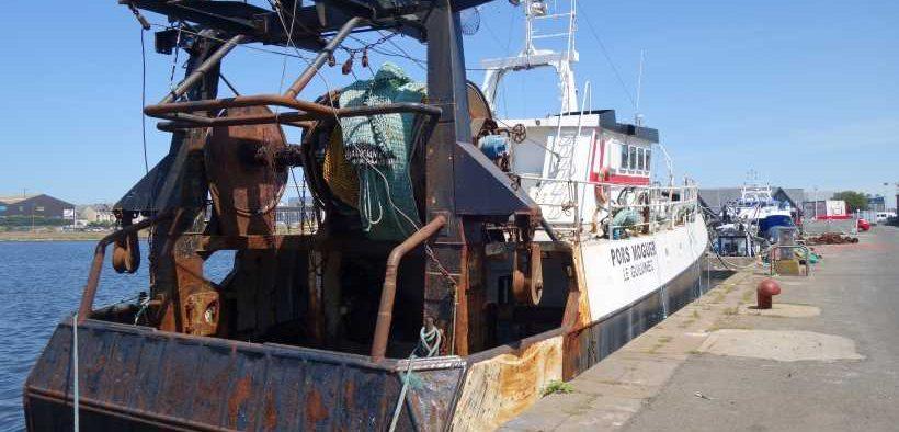 EC WELCOMES CORONAVIRUS FISHERIES