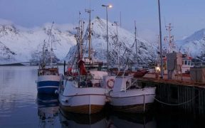 NORWEGIAN SEAFOOD EXPORTS GAINED