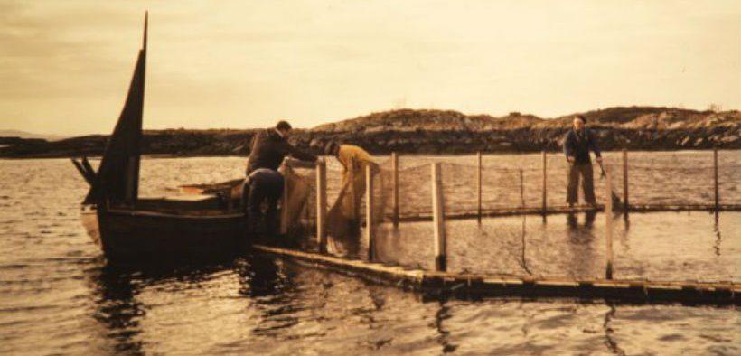 celebrating-50-years-of-modern-aquaculture