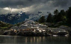 ALASKAN SEAFOOD COMPANIES MERGE