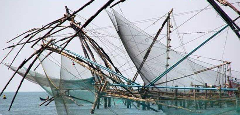 FISHERY NGOS RECEIVE GRANT