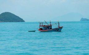 VIETNAMESE SEAFOOD EXPORTS DROP