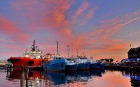WORLD FISH STOCKS HEALTHY
