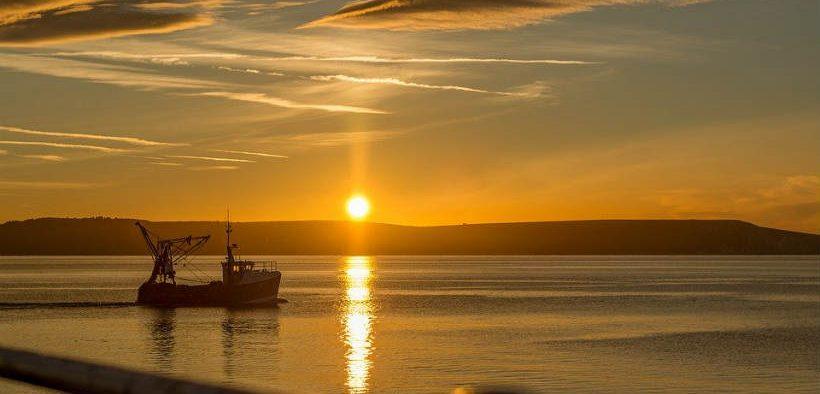 uk-seafood-innovation-fund-update