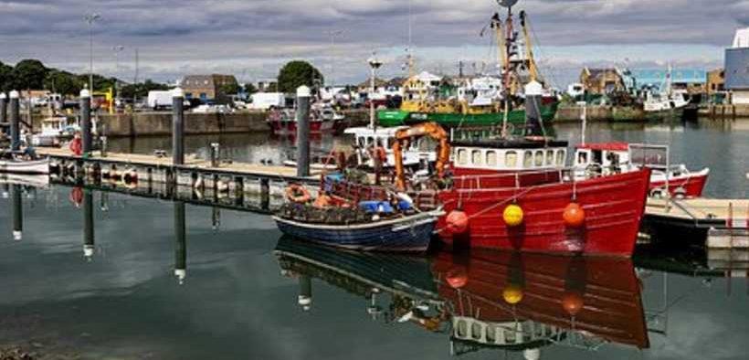 IRISH GRANTS TO SUPPORT FISHERIES